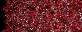 Effervescence Red