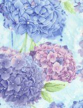 Hydrangea Harmony Sky
