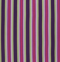 Chipper Tick Tock Stripe Raspberry